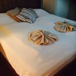 Check Inn Bed & Breakfast resmi