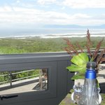 Grootbos Private Nature Reserve resmi