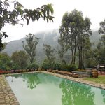 Wild Elephant Eco Friendly Resort Foto