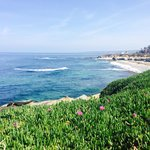 Foto de The Bed and Breakfast Inn at La Jolla