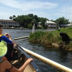 Homosassa Riverside Resort의 사진