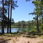 Foto McIntosh Lake Campground & RV Park
