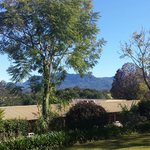 Bellingen Valley Lodge의 사진