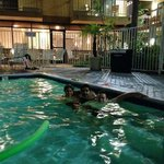 Hampton Inn San Diego-Sea World/Airport Area照片
