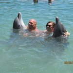 Dolphin Swim with UNEXSO