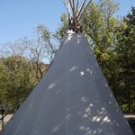 TeePee to rent
