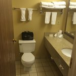 Φωτογραφία: BEST WESTERN Arrowhead Lodge & Suites