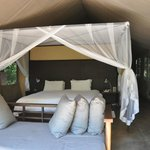 Φωτογραφία: Honeyguide Tented Safari Camps