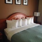Bilde fra Country Inn & Suites By Carlson Asheville Downtown Tunnel Road