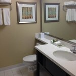Bathroom room 423, BEST WESTERN PLUS Winnipeg Airport Hotel  |  1715 Wellington Ave, Winnipeg, M