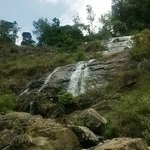 Waterfall next to Hornbill House