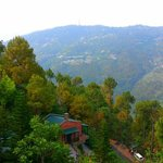 Baikunth Resort Kasauli Foto