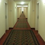Hilton Garden Inn Salt Lake City/Layton照片