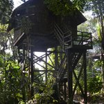 Permai Rainforest Resort resmi
