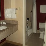 Φωτογραφία: Courtyard by Marriott Detroit Troy