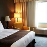 Photo de DoubleTree by Hilton Hotel Detroit - Novi