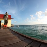 Foto de Uncle Chang's Sipadan Mabul Dive Lodge