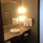 صورة فوتوغرافية لـ ‪Holiday Inn Hotel & Suites Saskatoon Downtown‬
