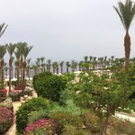 Foto Four Seasons Resort Sharm El Sheikh