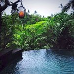 Bidadari Private Villas & Retreat - Ubud Foto
