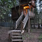 Foto de Out 'n' About Treehouse Treesort