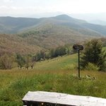 The Cataloochee Ranch의 사진