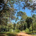 Photo of Tabin Wildlife Resort