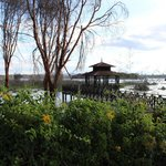 صورة فوتوغرافية لـ ‪Lake Naivasha Country Club-Sun Africa Hotels‬