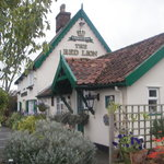 The Veggie Red Lion