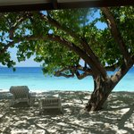 Diamonds Thudufushi Beach & Water Villas照片
