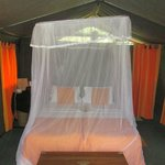 Photo de Mahoora Tented Safari Camp Yala