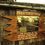 Photo of Treetops Lodge