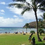 Photo of Hanauma Bay Private Dive Tours