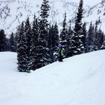 Alta Powder Day