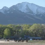 Zapata Ranch - A Nature Conservancy Preserve照片
