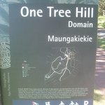 One Tree Hill (Maungakiekie) Foto