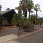 Desert Palms Alice Springs Foto