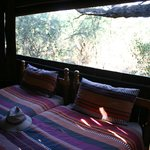 Photo de Mosetlha Bush Camp & Eco Lodge