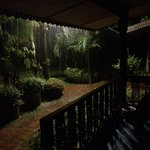 Outside the cabin during a rainstorm - very exciting!