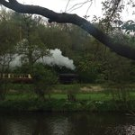 View from the back of the cottages, and steam trains passing by!