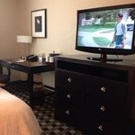 Photo de Hampton Inn & Suites Houston-Bush Intercontinental Airport