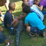 Foto de Kliebert's Turtle & Alligator Farm