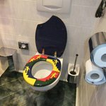 Weird painted toilet seat