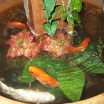 The little pond with Koi and Goldfish.