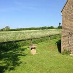Corsham Field Farmhouse resmi
