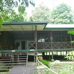Mulu World Heritage Area Accommodation照片
