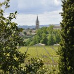 Through the trees to St Emilion