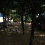 Foto de Lonely Beach Resort Tangalle
