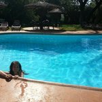 Foto de Kilaguni Serena Safari Lodge