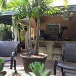 Foto de Coconut Cove Mens Guesthouse